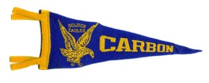 Carbon Pennant
